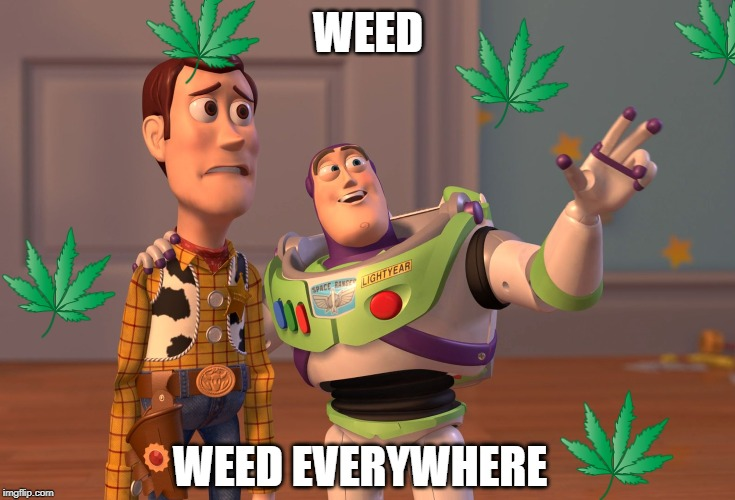 X, X Everywhere Meme |  WEED; WEED EVERYWHERE | image tagged in memes,x x everywhere | made w/ Imgflip meme maker