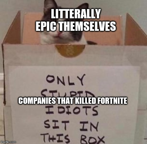 idiot box | LITTERALLY EPIC THEMSELVES COMPANIES THAT KILLED FORTNITE | image tagged in idiot box,cat,meme | made w/ Imgflip meme maker