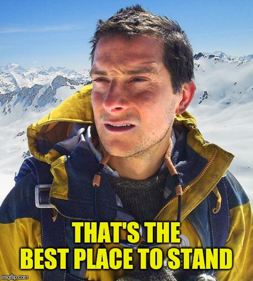 Bear Grylls Meme | THAT'S THE BEST PLACE TO STAND | image tagged in memes,bear grylls | made w/ Imgflip meme maker