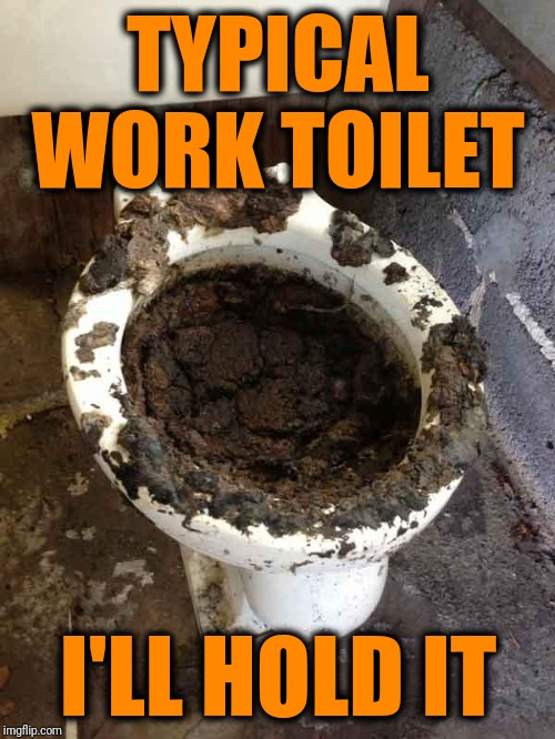 TYPICAL WORK TOILET I'LL HOLD IT | image tagged in toilet | made w/ Imgflip meme maker