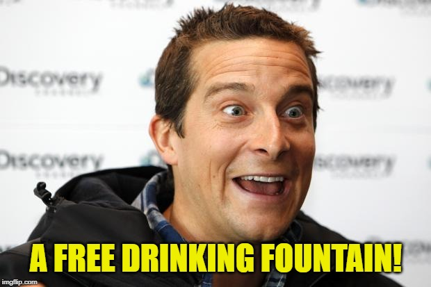 Bear Grylls Approved Food | A FREE DRINKING FOUNTAIN! | image tagged in bear grylls approved food | made w/ Imgflip meme maker
