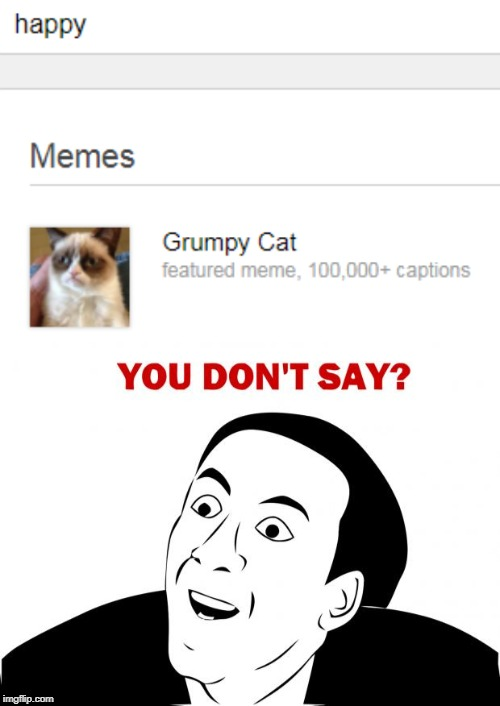 They need to rethink this... | image tagged in memes,you don't say,grumpy cat,happy,search | made w/ Imgflip meme maker