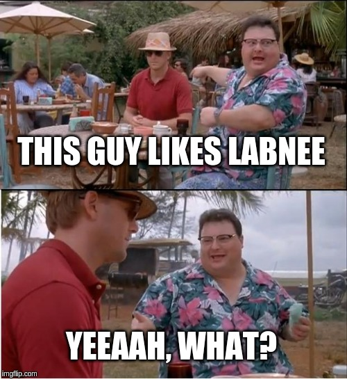 See Nobody Cares | THIS GUY LIKES LABNEE YEEAAH, WHAT? | image tagged in memes,see nobody cares | made w/ Imgflip meme maker