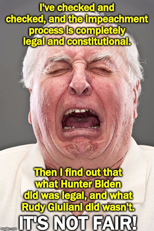 Conservative tears - Impeachment Edition |  I've checked and checked, and the impeachment process is completely legal and constitutional. Then I find out that what Hunter Biden did was legal, and what Rudy Giuliani did wasn't. IT'S NOT FAIR! | image tagged in conservative tears,impeachment,biden,rudy giuliani,legal,constitutional | made w/ Imgflip meme maker