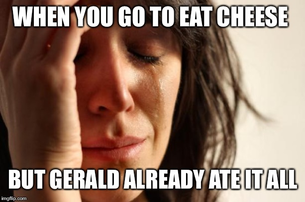 First World Problems | WHEN YOU GO TO EAT CHEESE BUT GERALD ALREADY ATE IT ALL | image tagged in memes,first world problems | made w/ Imgflip meme maker