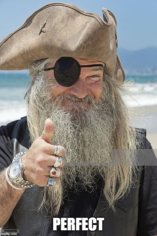 PIRATE THUMBS UP | PERFECT | image tagged in pirate thumbs up | made w/ Imgflip meme maker