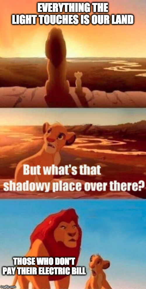 Simba Shadowy Place Meme | EVERYTHING THE LIGHT TOUCHES IS OUR LAND THOSE WHO DON'T PAY THEIR ELECTRIC BILL | image tagged in memes,simba shadowy place | made w/ Imgflip meme maker