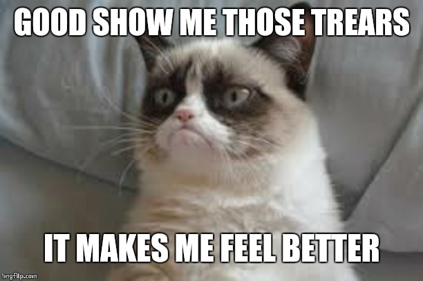 Grumpy cat | GOOD SHOW ME THOSE TREARS IT MAKES ME FEEL BETTER | image tagged in grumpy cat | made w/ Imgflip meme maker