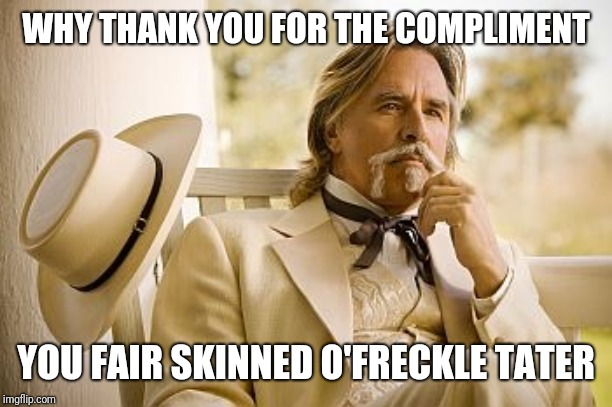 Southern Gentleman | WHY THANK YOU FOR THE COMPLIMENT YOU FAIR SKINNED O'FRECKLE TATER | image tagged in southern gentleman | made w/ Imgflip meme maker