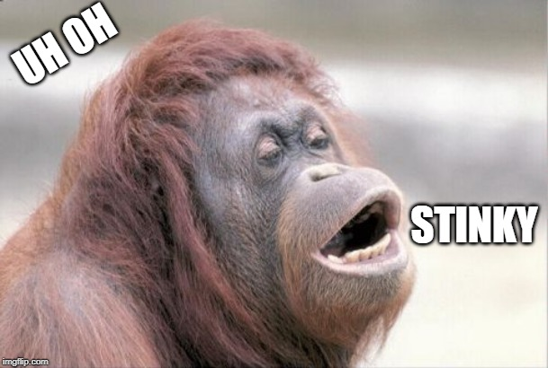 Monkey OOH | UH OH STINKY | image tagged in memes,monkey ooh | made w/ Imgflip meme maker