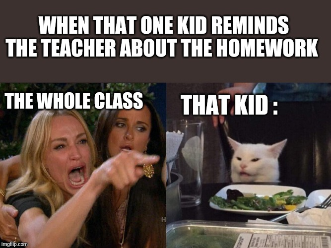Women yelling at cat |  WHEN THAT ONE KID REMINDS THE TEACHER ABOUT THE HOMEWORK; THE WHOLE CLASS; THAT KID : | image tagged in woman yelling at cat,student life,memes | made w/ Imgflip meme maker