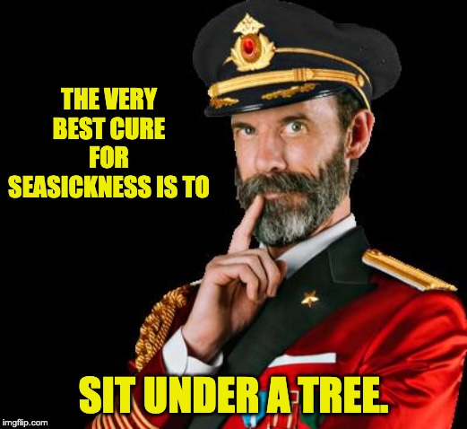 captain obvious |  THE VERY BEST CURE FOR SEASICKNESS IS TO; SIT UNDER A TREE. | image tagged in captain obvious | made w/ Imgflip meme maker