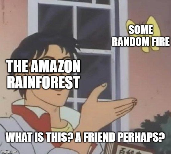 Is This A Pigeon | THE AMAZON RAINFOREST SOME RANDOM FIRE WHAT IS THIS? A FRIEND PERHAPS? | image tagged in memes,is this a pigeon,amazon,fire,environmental,environment | made w/ Imgflip meme maker
