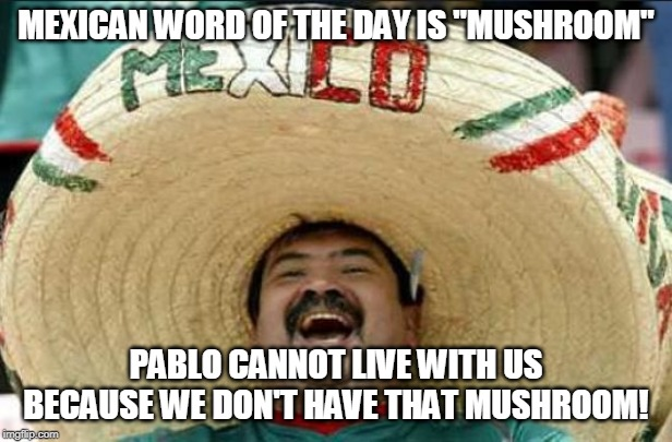 "mexican word of the day | MEXICAN WORD OF THE DAY IS ""MUSHROOM"" PABLO CANNOT LIVE WITH US BECAUSE WE DON'T HAVE THAT MUSHROOM! 