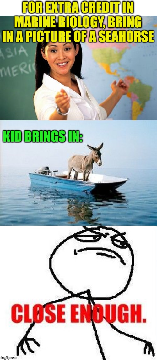Bonus points for originality |  FOR EXTRA CREDIT IN MARINE BIOLOGY, BRING IN A PICTURE OF A SEAHORSE; KID BRINGS IN: | image tagged in memes,unhelpful high school teacher,close enough,donkey on a boat,funny,extra credit | made w/ Imgflip meme maker