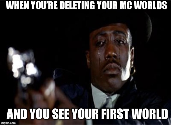 Crying Wesley Snipes | WHEN YOU'RE DELETING YOUR MC WORLDS AND YOU SEE YOUR FIRST WORLD | image tagged in crying wesley snipes | made w/ Imgflip meme maker