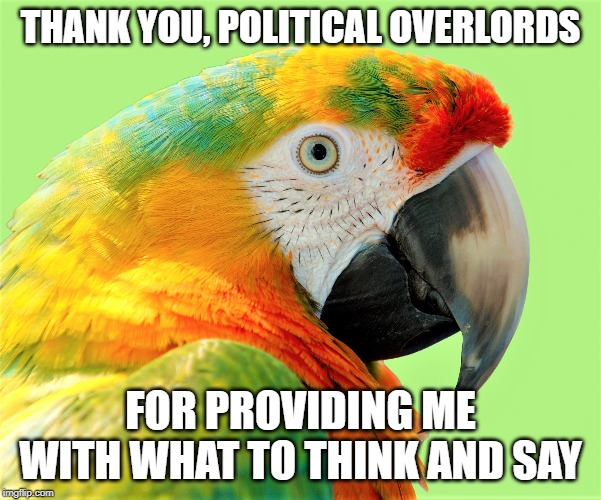 liberal conservative political parrot | THANK YOU, POLITICAL OVERLORDS FOR PROVIDING ME WITH WHAT TO THINK AND SAY | image tagged in parrot,politics,propaganda,democrat,republican | made w/ Imgflip meme maker