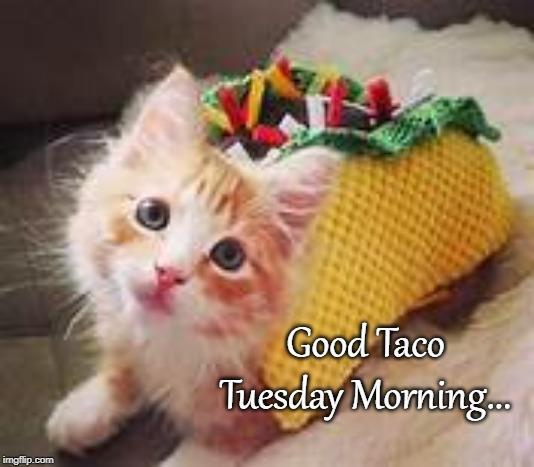 ラブリー Good Morning Taco Tuesday Meme - ラスカルトート