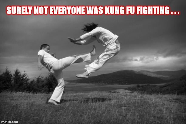 KUNG FU | SURELY NOT EVERYONE WAS KUNG FU FIGHTING . . . | image tagged in kung fu,fighting,field,mountains,couple,martial arts | made w/ Imgflip meme maker