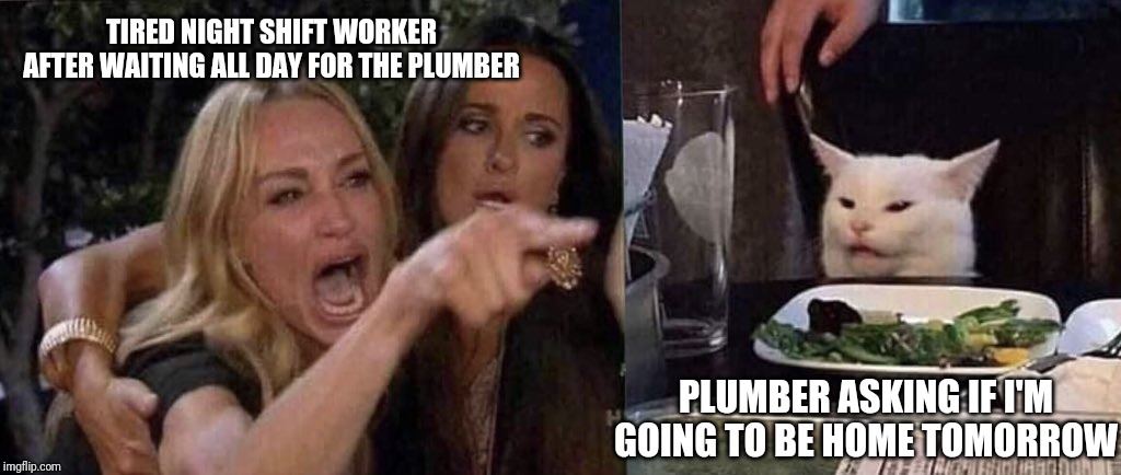 woman yelling at cat | TIRED NIGHT SHIFT WORKER AFTER WAITING ALL DAY FOR THE PLUMBER PLUMBER ASKING IF I'M GOING TO BE HOME TOMORROW | image tagged in woman yelling at cat | made w/ Imgflip meme maker