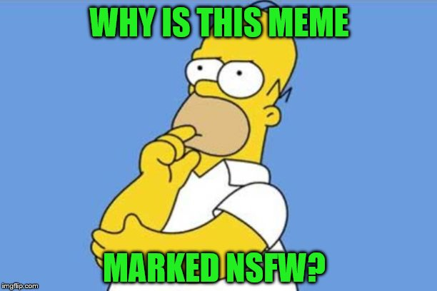 WHY IS THIS MEME MARKED NSFW? | image tagged in homer thinking | made w/ Imgflip meme maker
