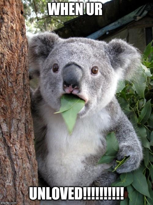 Surprised Koala |  WHEN UR; UNLOVED!!!!!!!!!! | image tagged in memes,surprised koala | made w/ Imgflip meme maker