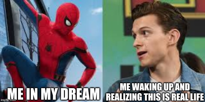 ME IN MY DREAM ME WAKING UP AND REALIZING THIS IS REAL LIFE | image tagged in spiderman | made w/ Imgflip meme maker