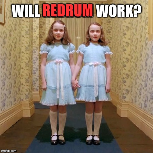 Twins from The Shining | WILL REDRUM WORK? REDRUM | image tagged in twins from the shining | made w/ Imgflip meme maker