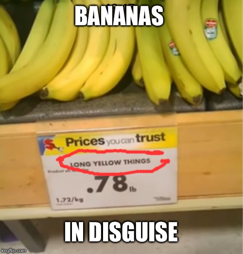 Long yellow things | BANANAS IN DISGUISE | image tagged in isaac_laugh,laugh,banana,food,disgusting | made w/ Imgflip meme maker