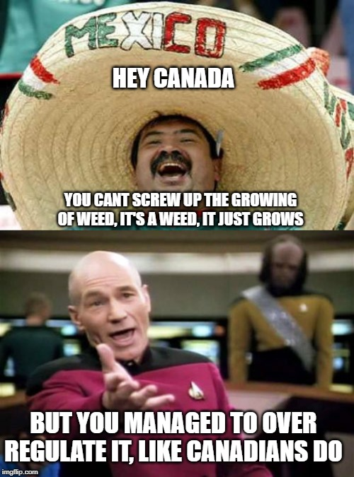 CannTrust to burn 77M in unlicenced weed | HEY CANADA YOU CANT SCREW UP THE GROWING OF WEED, IT'S A WEED, IT JUST GROWS BUT YOU MANAGED TO OVER REGULATE IT, LIKE CANADIANS DO | image tagged in memes,picard wtf,happy mexican,weed,idiots,big government | made w/ Imgflip meme maker