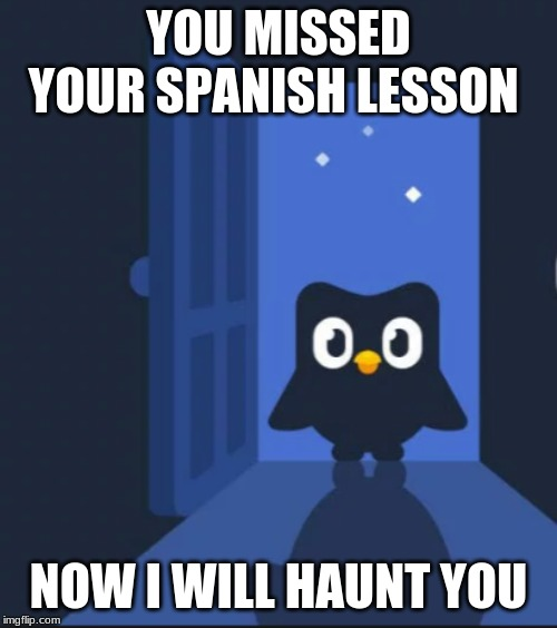 Duolingo bird | YOU MISSED YOUR SPANISH LESSON NOW I WILL HAUNT YOU | image tagged in duolingo bird | made w/ Imgflip meme maker