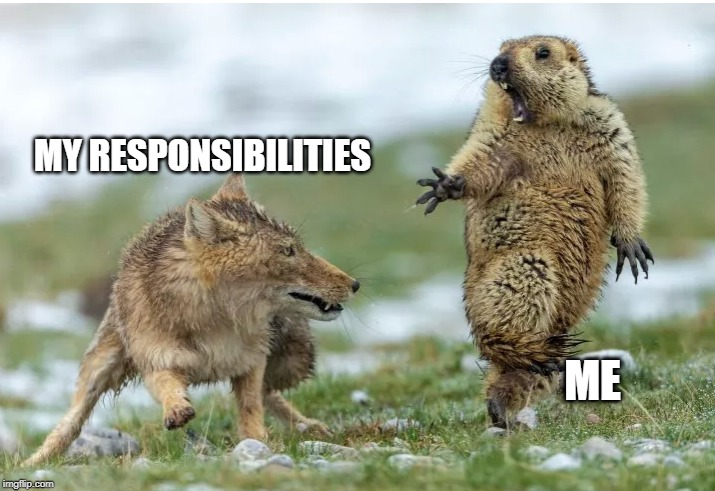MY RESPONSIBILITIES ME | image tagged in responsibilities,responsibility,life,my life | made w/ Imgflip meme maker