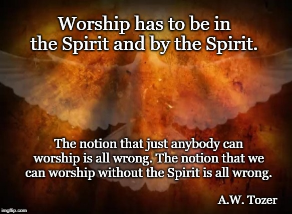 Worship has to be in the Spirit and by the Spirit. A.W. Tozer The notion that just anybody can worship is all wrong. The notion that we can  | image tagged in tozer,worship,holy spirit | made w/ Imgflip meme maker