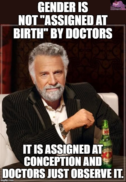 "What basic biology teaches us. | GENDER IS NOT ""ASSIGNED AT BIRTH"" BY DOCTORS IT IS ASSIGNED AT CONCEPTION AND DOCTORS JUST OBSERVE IT. 