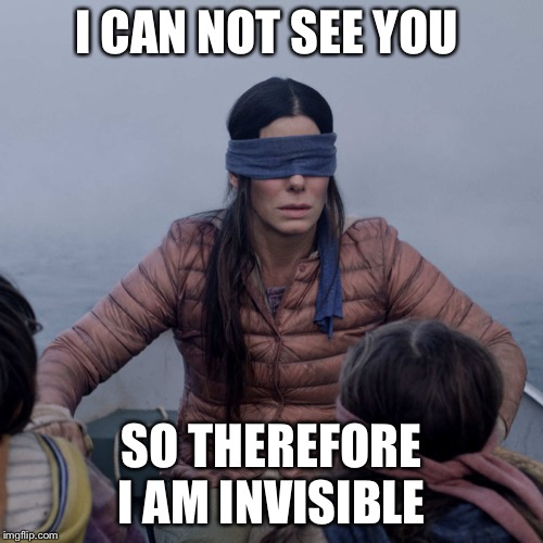 Bird Box |  I CAN NOT SEE YOU; SO THEREFORE I AM INVISIBLE | image tagged in memes,bird box | made w/ Imgflip meme maker