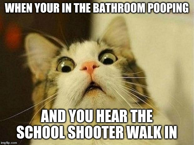 Scared Cat Meme |  WHEN YOUR IN THE BATHROOM POOPING; AND YOU HEAR THE SCHOOL SHOOTER WALK IN | image tagged in memes,scared cat | made w/ Imgflip meme maker