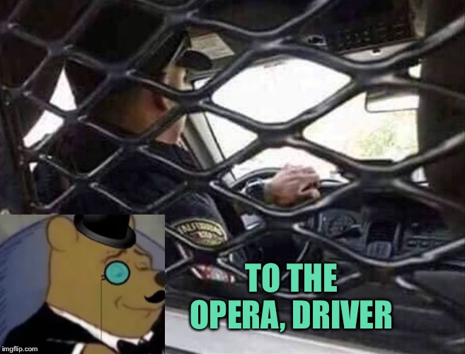 Too many honey lagers for Pooh. |  TO THE OPERA, DRIVER | image tagged in winnie the pooh,police,memes,funny | made w/ Imgflip meme maker