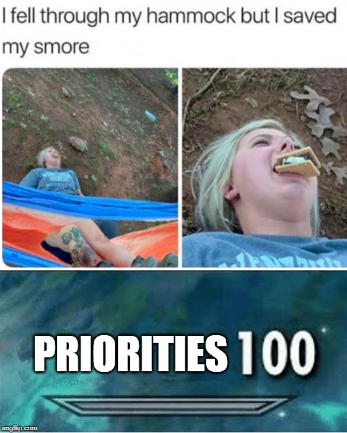 PRIORITIES | image tagged in skyrim 100 blank,memes,funny,smores,hammock,fall | made w/ Imgflip meme maker