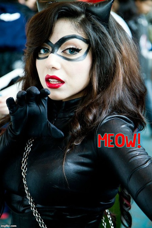 New Meaning to Crazy Cat Lady | MEOW! | image tagged in vince vance,cat girl,cats,cat woman,crazy cat lady,red lips blue eyes brunette | made w/ Imgflip meme maker
