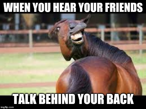 Excuse Me?! |  WHEN YOU HEAR YOUR FRIENDS; TALK BEHIND YOUR BACK | image tagged in lol,happy,hello,wut | made w/ Imgflip meme maker