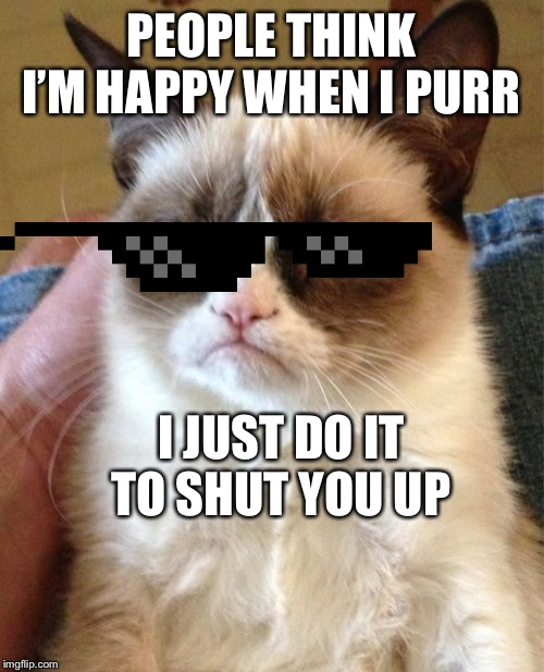 Grumpy Cat |  PEOPLE THINK I'M HAPPY WHEN I PURR; I JUST DO IT TO SHUT YOU UP | image tagged in memes,grumpy cat | made w/ Imgflip meme maker
