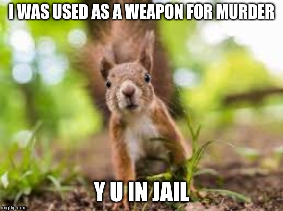 I WAS USED AS A WEAPON FOR MURDER Y U IN JAIL | made w/ Imgflip meme maker