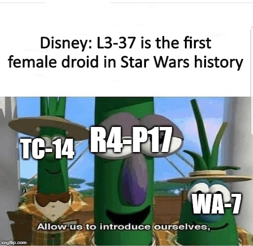 Congratulations, Disney, you're wrong. |  Disney: L3-37 is the first female droid in Star Wars history; R4-P17; TC-14; WA-7 | image tagged in allow us to introduce ourselves,disney,solo,r4p17,tc14,wa7 | made w/ Imgflip meme maker