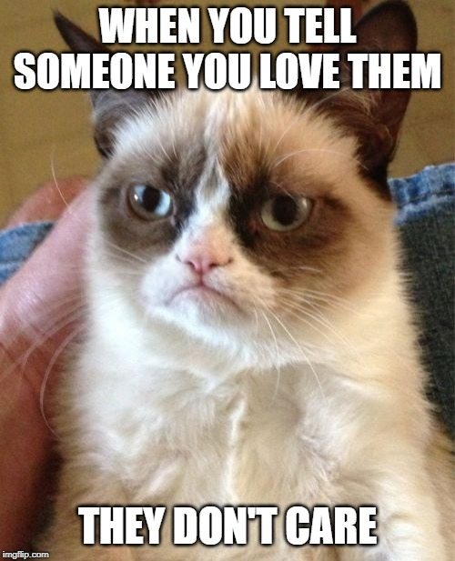 Grumpy Cat | WHEN YOU TELL SOMEONE YOU LOVE THEM THEY DON'T CARE | image tagged in memes,grumpy cat | made w/ Imgflip meme maker