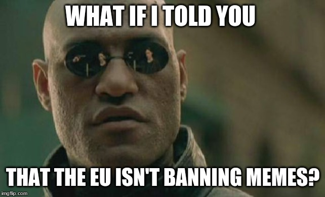 Matrix Morpheus | WHAT IF I TOLD YOU THAT THE EU ISN'T BANNING MEMES? | image tagged in memes,matrix morpheus | made w/ Imgflip meme maker