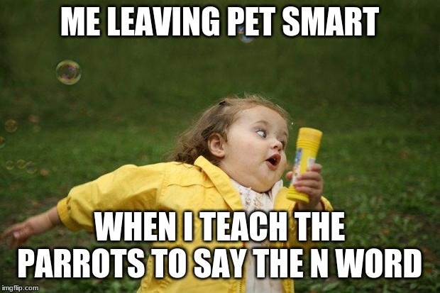 girl running | ME LEAVING PET SMART WHEN I TEACH THE PARROTS TO SAY THE N WORD | image tagged in girl running | made w/ Imgflip meme maker