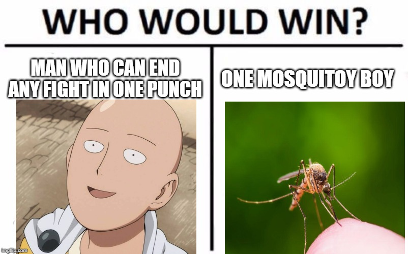 Who Would Win? | MAN WHO CAN END ANY FIGHT IN ONE PUNCH ONE MOSQUITOY BOY | image tagged in memes,who would win | made w/ Imgflip meme maker