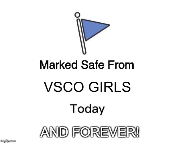 Marked Safe From | VSCO GIRLS AND FOREVER! | image tagged in memes,marked safe from | made w/ Imgflip meme maker