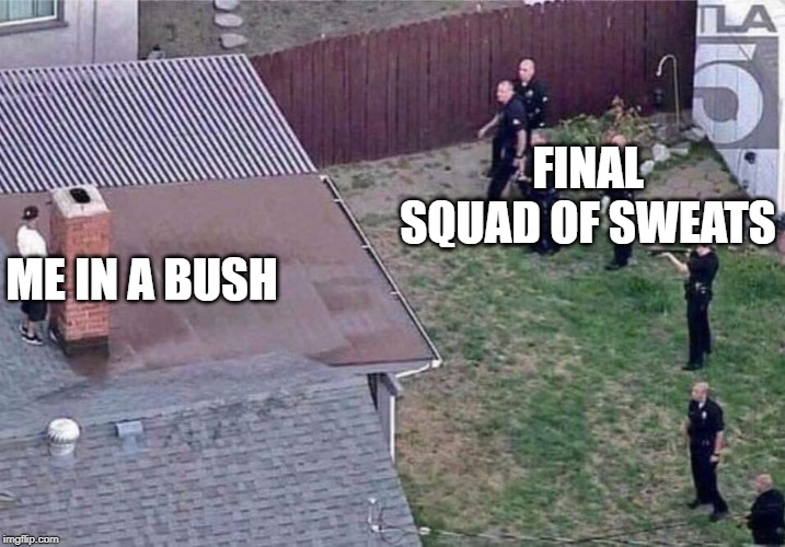 Fortnite meme | FINAL SQUAD OF SWEATS ME IN A BUSH | image tagged in fortnite meme | made w/ Imgflip meme maker