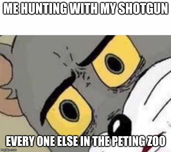 Tom Cat Unsettled Close up |  ME HUNTING WITH MY SHOTGUN; EVERY ONE ELSE IN THE PETING ZOO | image tagged in tom cat unsettled close up | made w/ Imgflip meme maker